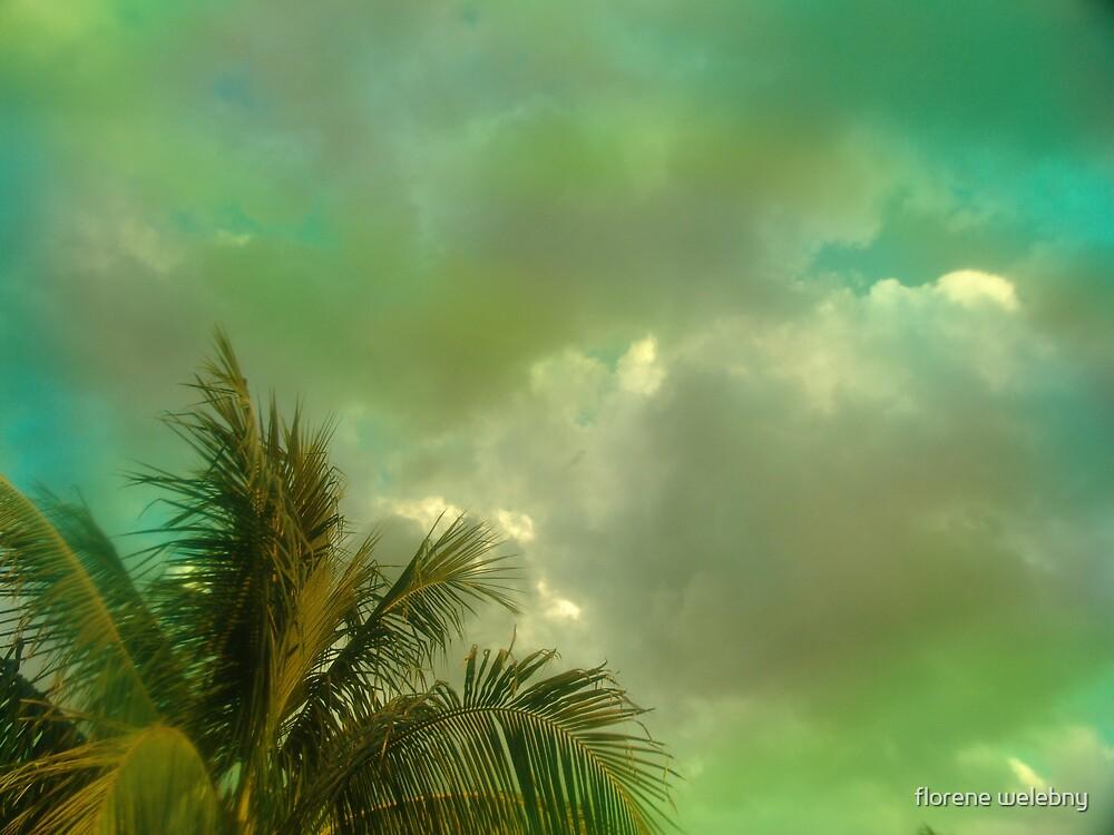 Malaysan Mint by florene welebny