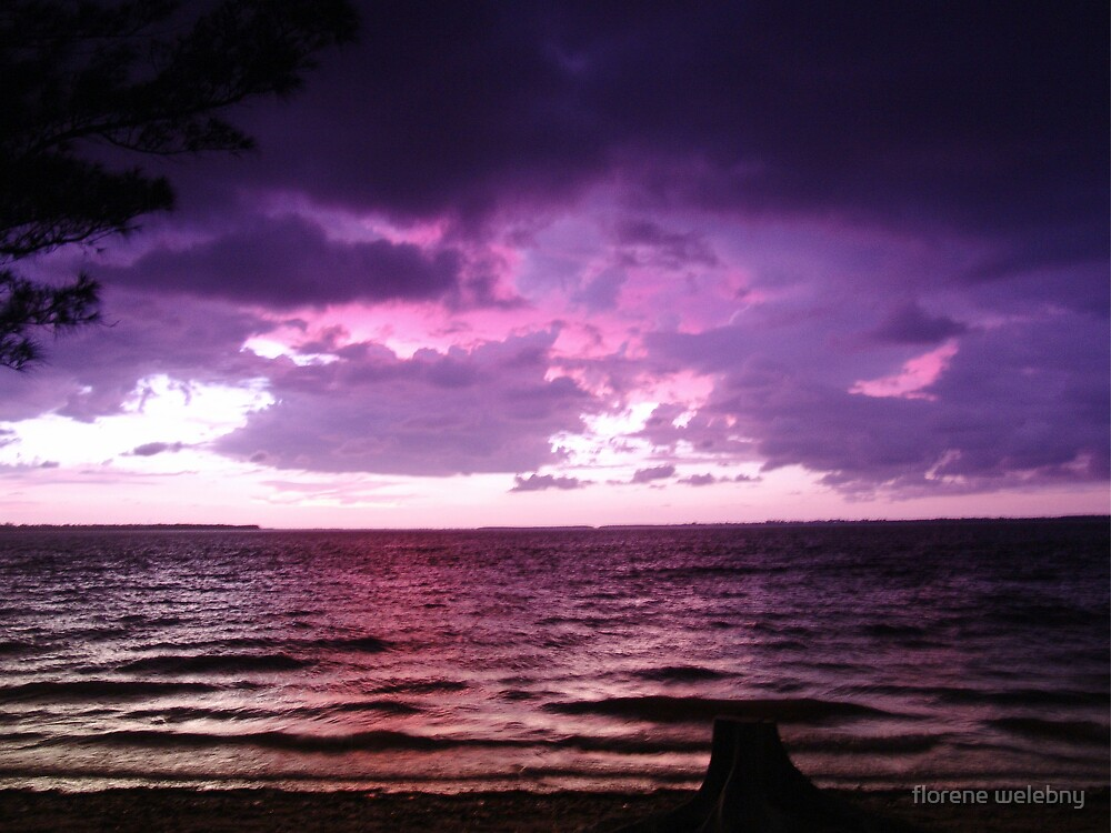 Storm Brewing by florene welebny