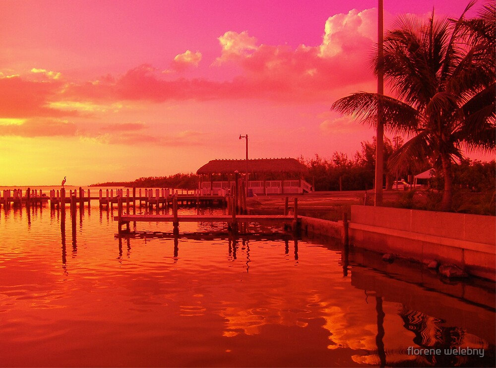 Tropics Show Off by florene welebny