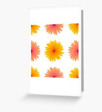 Spring Pink Yellow Flowers Isolated on White Background. Seamless Flower Pattern Greeting Card