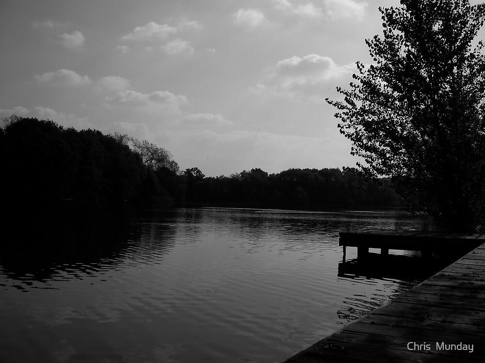 Alone by Chris  Munday
