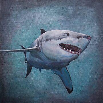 White Pointer Shark Prints by afletcher