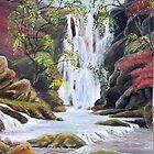 Snaid Falls, Inversnaid 1960 by BillCowe
