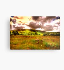The hills of Donegal  Metal Print