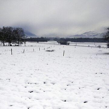 Snow near the Cemetery by CaroT