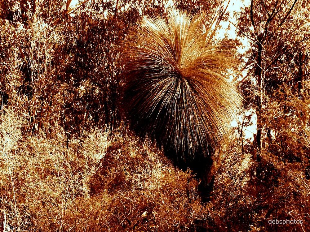 """Bronze Bushland"" by debsphotos"