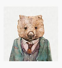 Wombat Photographic Print