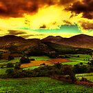 Irelands Forty Shades of Green by doublevision