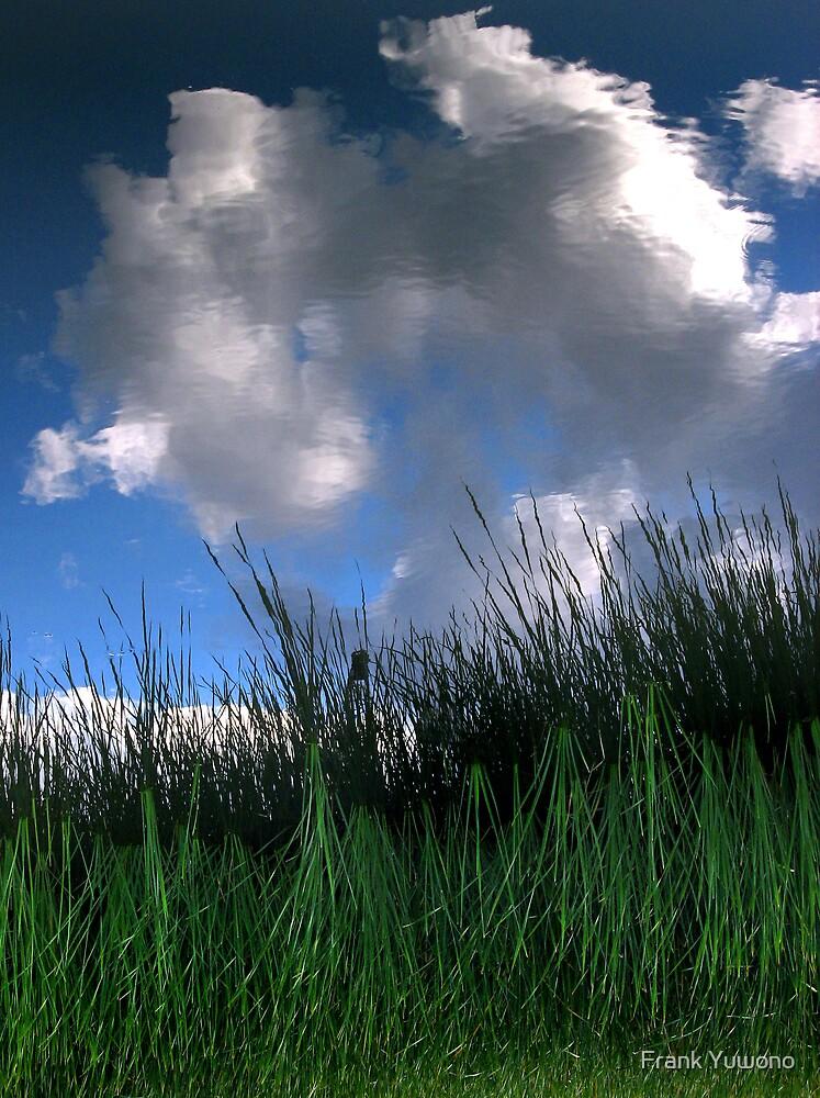 Moody Sky by Frank Yuwono