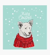 Merry Christmas New Year's card design White dog in a Christmas red knitted sweater. Shepherd. Sketch drawing. Black contour and white stars on blue background Photographic Print