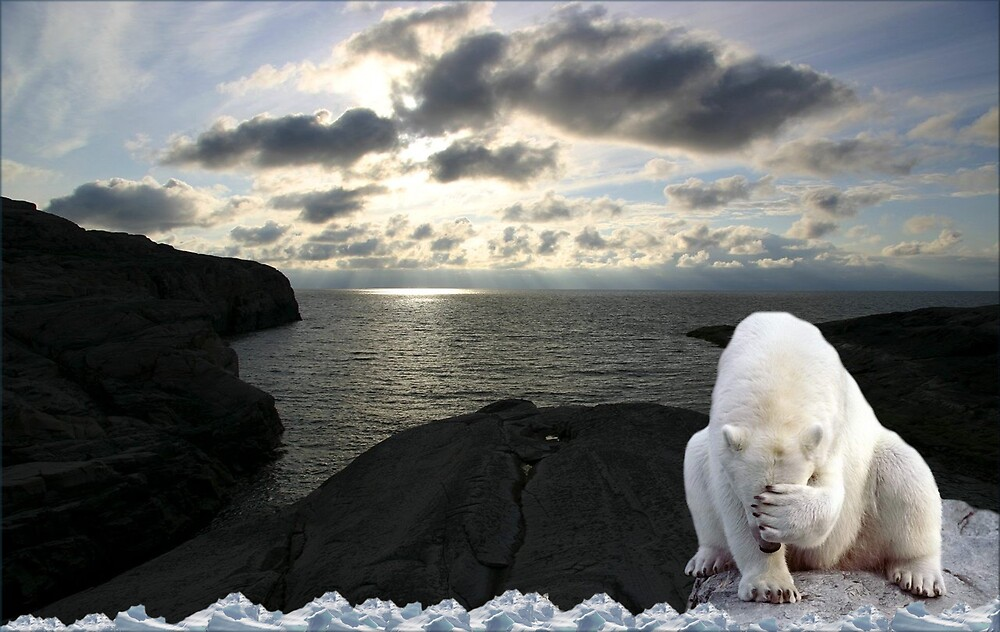 1003-Polar Midnight Sun Headache by George W Banks