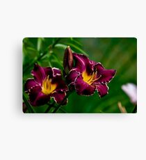 """Thundering Ovation"" Daylily Canvas Print"