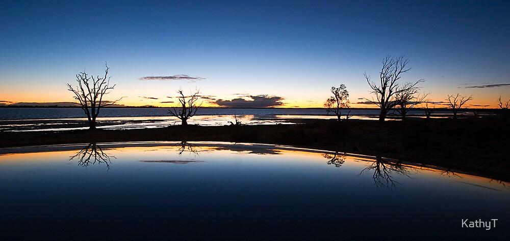 Lake Bonney Reflection - Solved! by KathyT