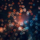 Universe in Bokeh by Catherine MacBride