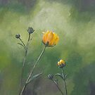 Field Impressions 13: Buttercup (card only) by Tanja Udelhofen