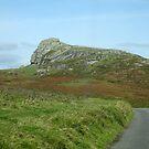 Somewhere on Dartmoor, South Devon, England by trish725
