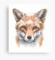 Sly clever fox watercolour Canvas Print