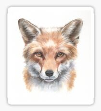 Sly clever fox watercolour Sticker