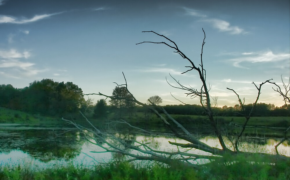 Small Pond by GPMPhotography