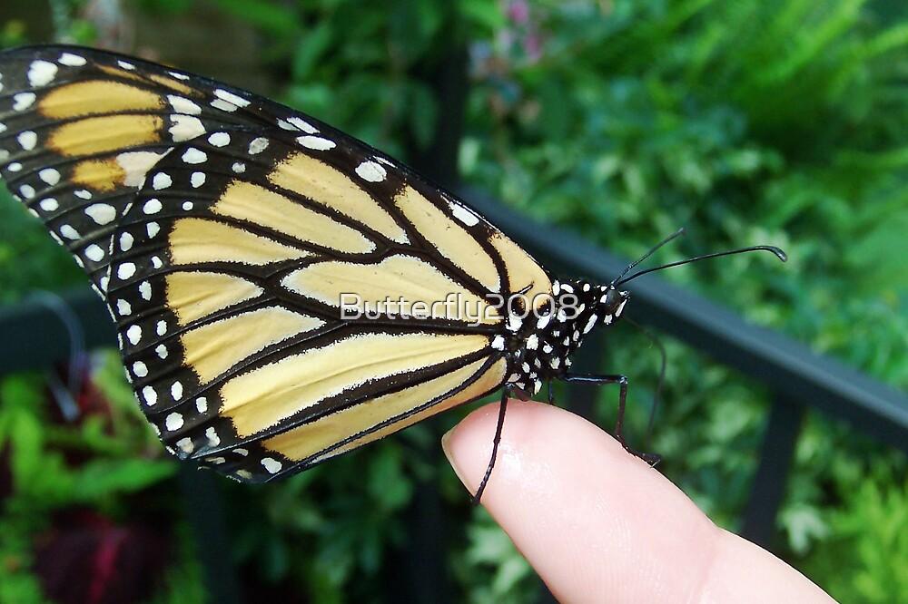 Gotcha by Butterfly2008