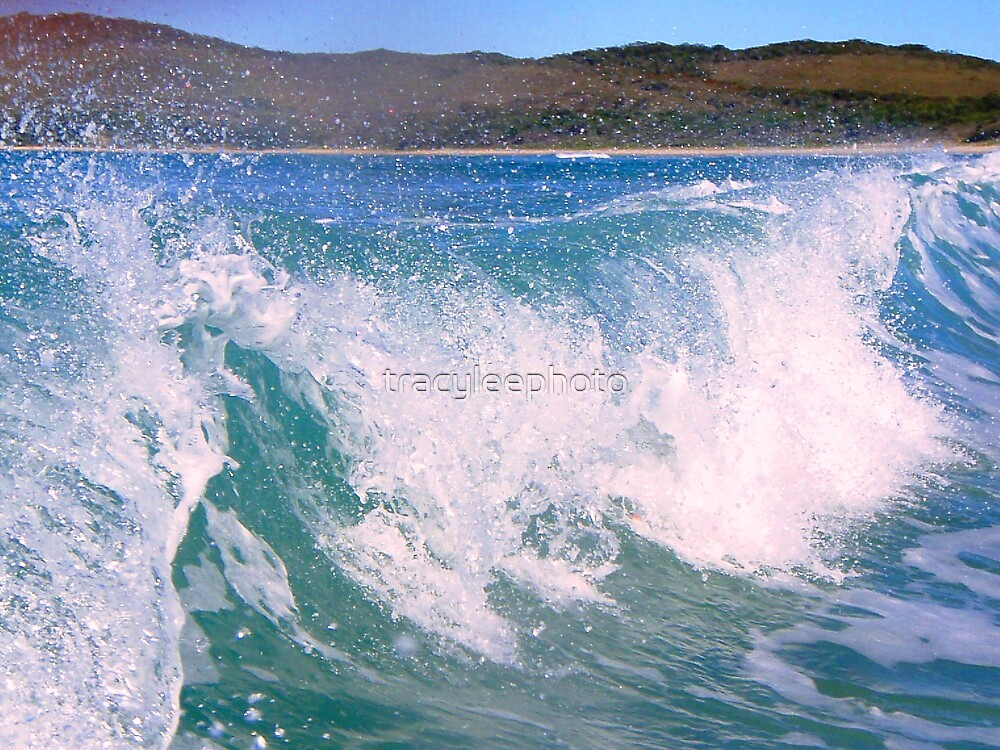 Wave by tracyleephoto