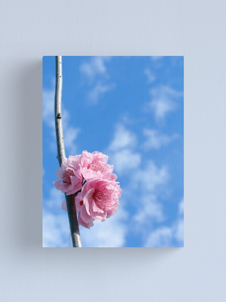 Alternate view of Spring has sprung Canvas Print