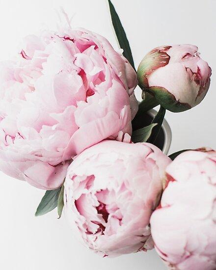 Blumendruck, skandinavisch, Pfingstrose, Modedruck, skandinavische Kunst, moderne Kunst, Wandkunst, Print, minimalistisch, modern von juliaemelian