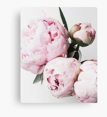 Flowers print, Scandinavian, Peony, Fashion print, Scandinavian art, Modern art, Wall art, Print, Minimalistic, Modern Canvas Print