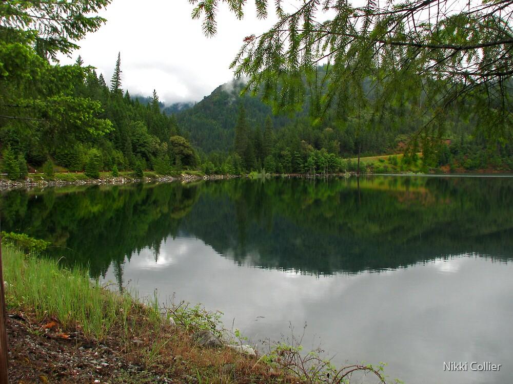 Applegate Lake by Nikki Collier