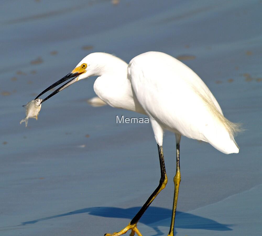 White Egret with Dinner by Memaa