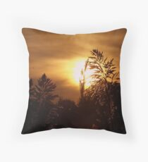Lines of Scrimmage Throw Pillow
