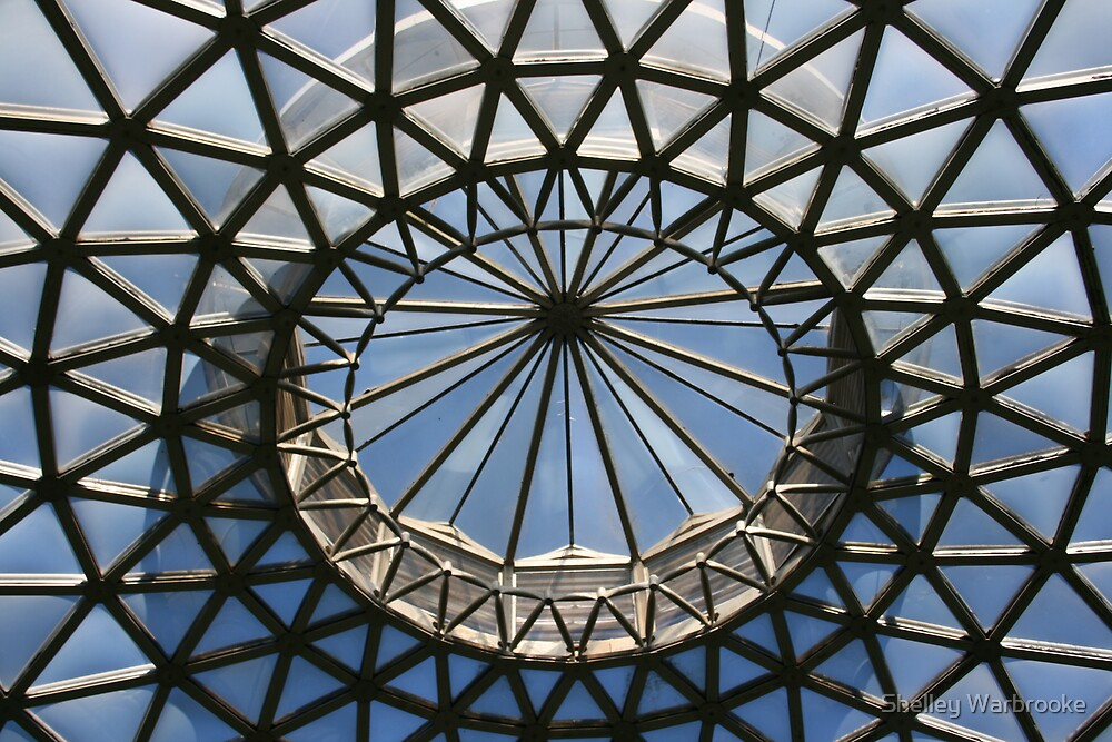 Dome by Shelley Warbrooke