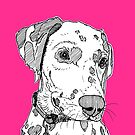 Dalmatian Dog Portrait by Adam Regester