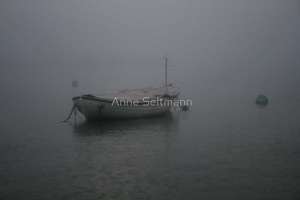 * by Anne Seltmann