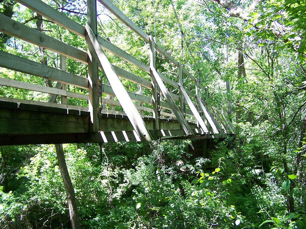 Solitude (as Cotton Park Bridge) by Terileedav