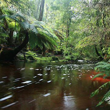 newhaven track creek no 1 by phillip24