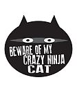 Beware of My Crazy Ninja Cat by jitterfly