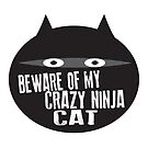 Beware of My Crazy Ninja Cat by jitterfly