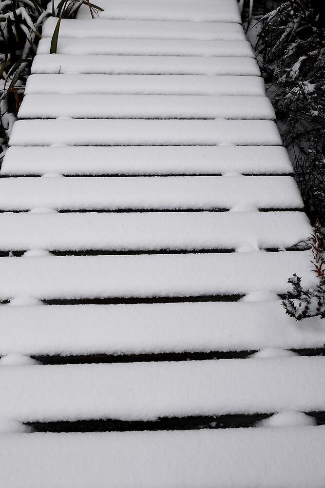 Snow Bridge by Benn Hartung