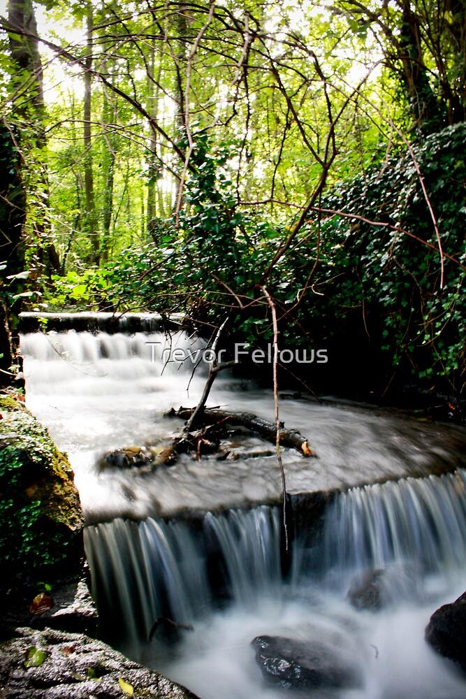 Little falls by Trevor Fellows