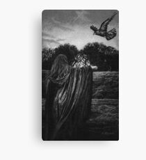 MORGAINE AND THE RAVEN  Canvas Print