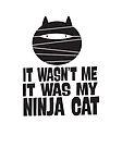 IT WASN'T ME, IT WAS MY NINJA CAT by jitterfly