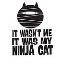 IT WASN'T ME, IT WAS MY NINJA CAT by jitterfly
