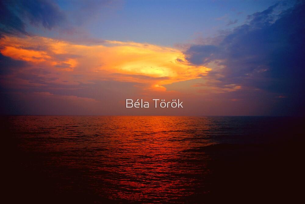 Red water by Béla Török