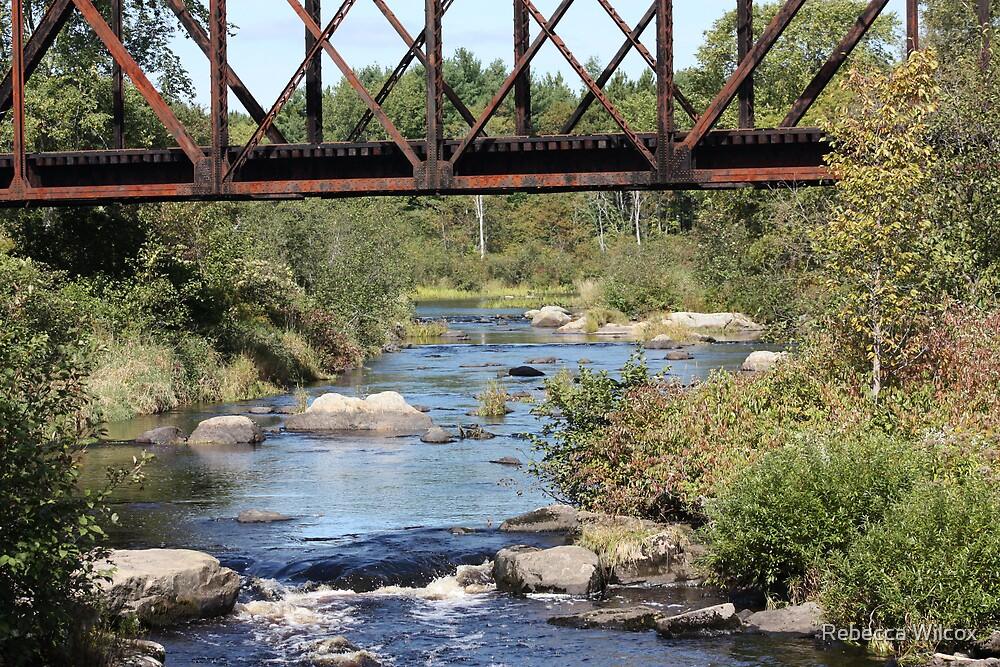 Water Under the Bridge by Rebecca Brann