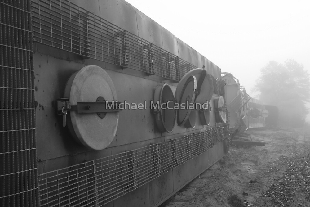 End of the Line by Michael McCasland