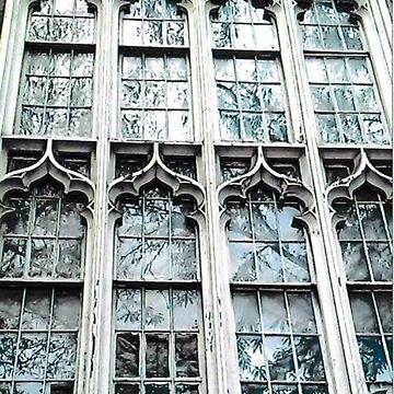 Gothic Windows  by RobynLee