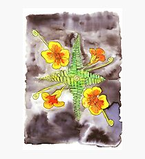 Watercolor botanical illustration Photographic Print