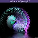 Silent and Graceful by gheather21
