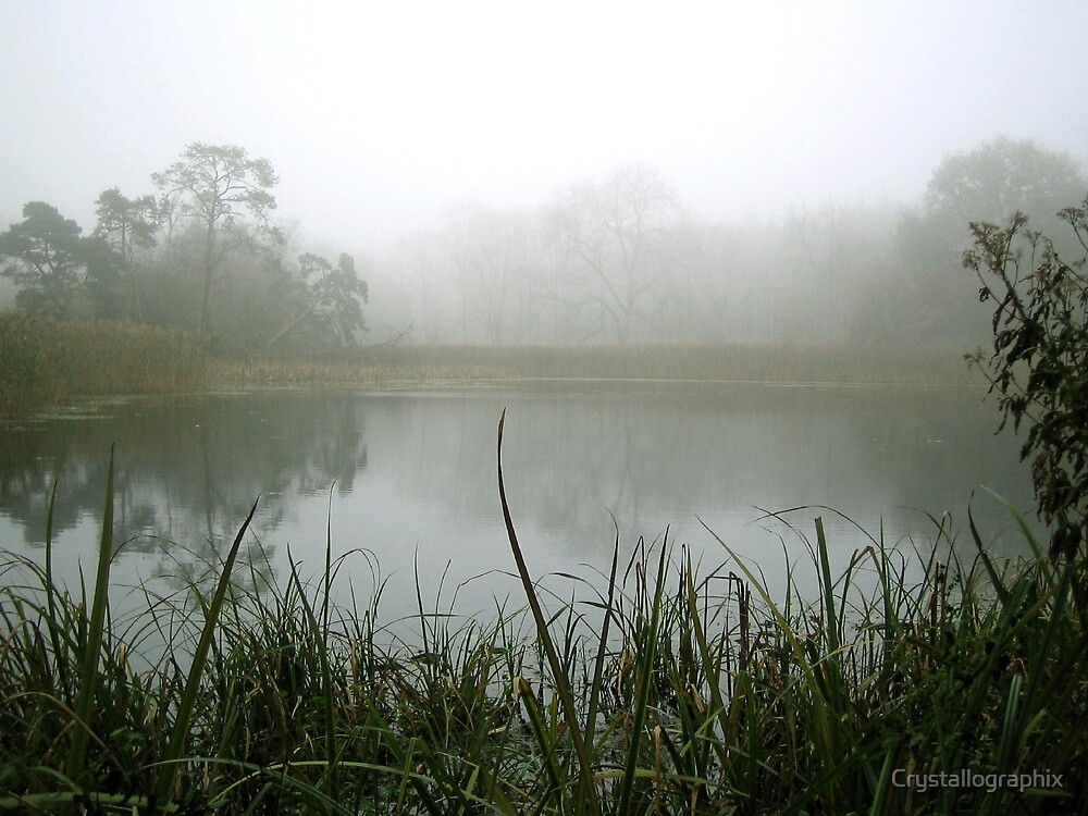 Memories of Suffolk - Winter Lake by Crystallographix